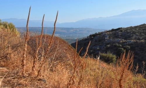 GRECJA / Kreta / okolice Aptery / Widok z okolic Aptery