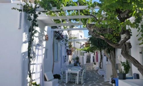 GRECJA / Cyklady / Naoussa - perła Paros / W oczekiwaniu na turystów..