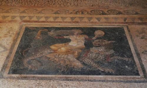 GRECJA / Cyklady / Wyspa Delos / Delos - jedna z wielu mozaik