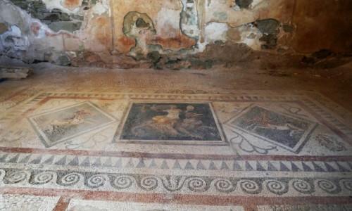 GRECJA / Cyklady / Wyspa Delos / Mozaiki z Delos