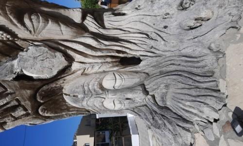 Zdjęcie GRECJA / Południowa Kreta / Matala / Drugie życie dzrzewa oliwnego