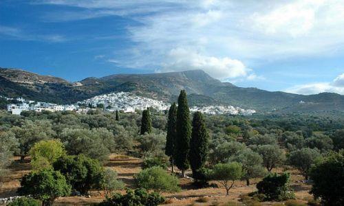 Zdjecie GRECJA / Cykaldy / naxos / miasteczko w głębi wyspy