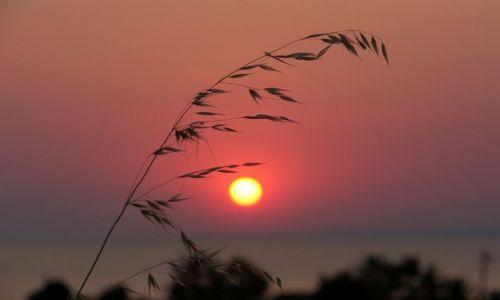 Zdjęcie GRECJA / Chalkidiki / brak / Zachód słońca