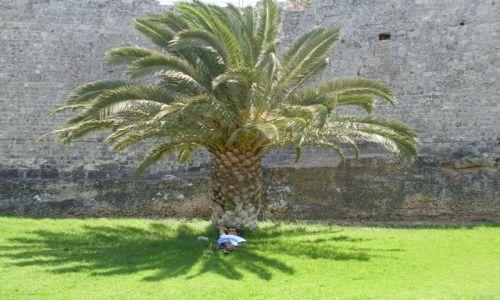 Zdjecie GRECJA / Rodos / mury obronne zamku Joanitów / Odpoczynek na Rodos