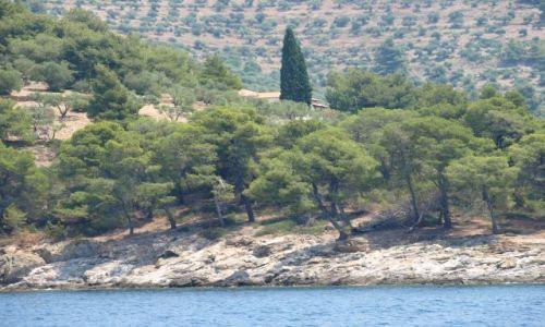 Zdjęcie GRECJA / Chalkidiki / sithonia / po drodze do Agios Georgios