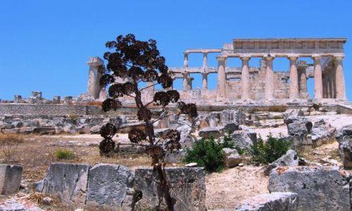 Zdjecie GRECJA / Cylkady / Wyspa Aegina / Świątynia Aphae