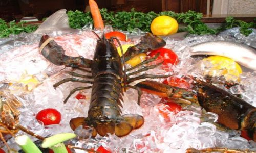 Zdjecie GRECJA / Tolo / wystawa przy jednej z restauracji / Owoce morza (wł.: frutti di mare)