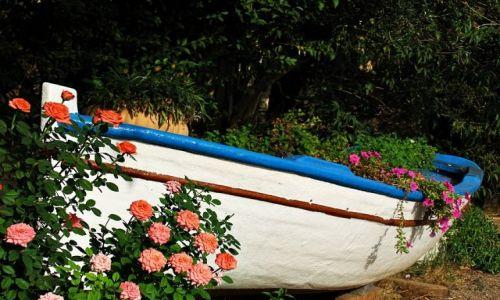 Zdjecie GRECJA / Riwiera Olimpijska / ok. Nei Pori / różana  łódź.....cd
