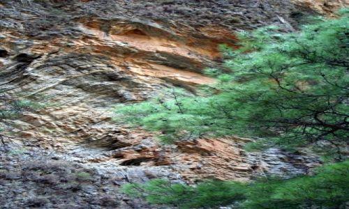 Zdjecie GRECJA / Samaria, Kreta / Kreta / Wąwóz Samaria 6