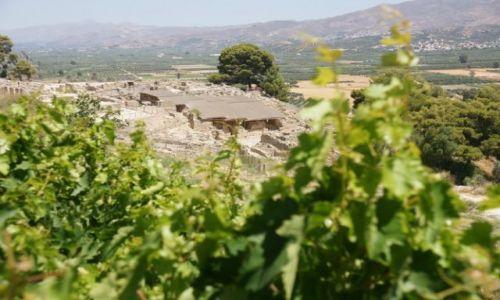 Zdjęcie GRECJA / Kreta / Fajstos / Faistos i winorośl