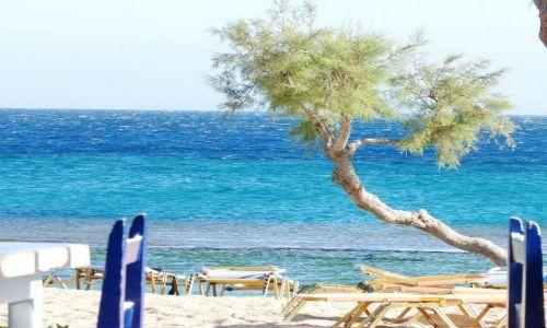 Zdjecie GRECJA / Mikonos / Paradise beach / Popołudniowy relaks
