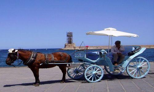 Zdjęcie GRECJA / wyspa Kreta / Chania / koń w kapeluszu