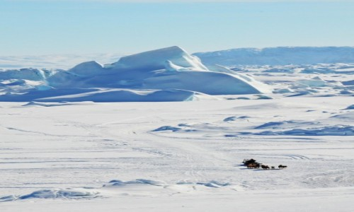 Zdjęcie GRENLANDIA / Qaasuitsup / Ilulissat / Na saniach