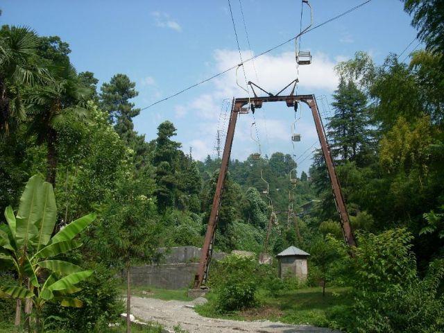 Zdjęcia: Batumi, Adżaria, Ogród Botaniczny, GRUZJA