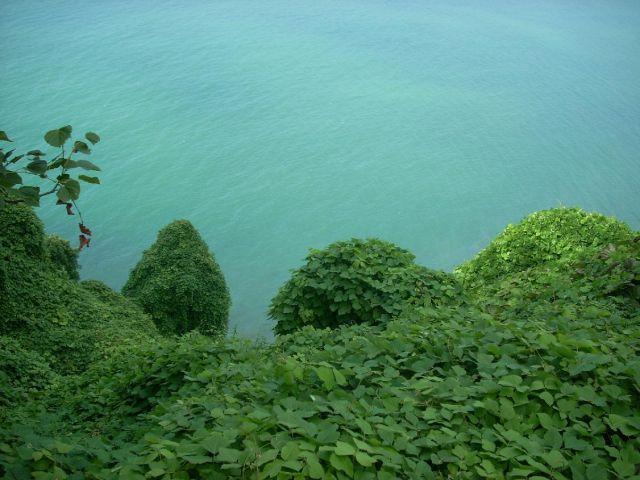 Zdj�cia: Batumi, Ad�aria, Widok z ogrodu botanicznego na Morze Czarne, GRUZJA