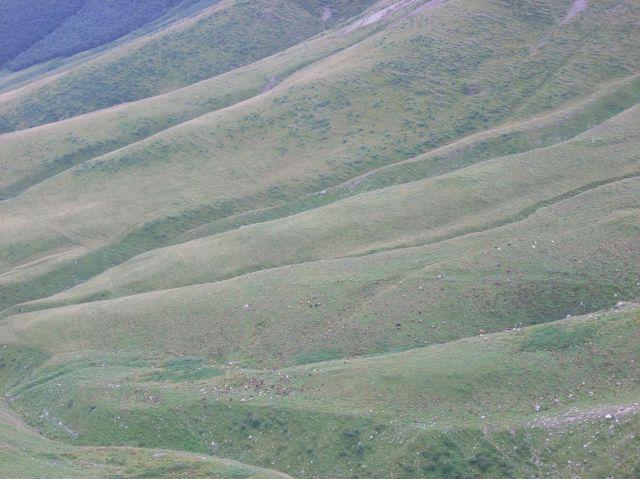 Zdjęcia: Kazbegi, Kaukaz, Postrzębione zbocza, GRUZJA