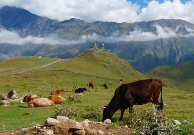 Zdjęcia: Kazbegi, Kaukaz, Gruzja Tsamida Sameba, GRUZJA