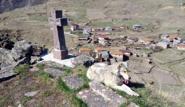 Zdjęcia: Tsdo, Stepancminda, Opuszczona osada, GRUZJA