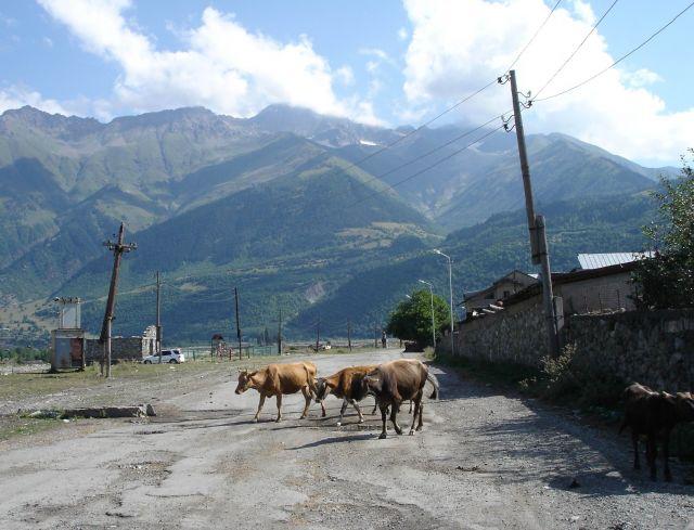 Zdjęcia: okolice Mestii, Swanetia, :), GRUZJA