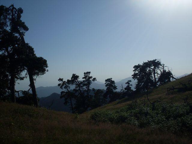 Zdjęcia: północny-zachód od Atskuri (Atskuri w połowie drogi pomiędzy Borżomi a Akhaltsikhe), Park Narodowy Borżomi-Karaguli, ... w ostrych promieniach słońca..., GRUZJA