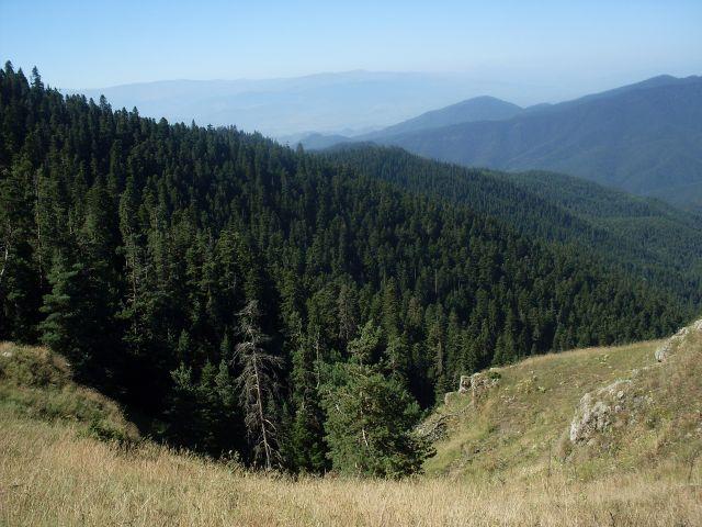 Zdjęcia: północny-zachód od Atskuri (Atskuri w połowie drogi pomiędzy Borżomi a Akhaltsikhe), Park Narodowy Borżomi-Karaguli, ... ponad lasem..., GRUZJA