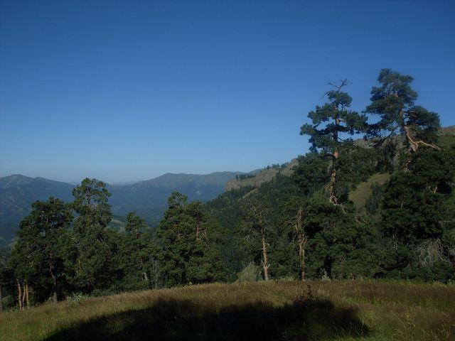 Zdjęcia: północny-zachód od Atskuri (Atskuri w połowie drogi pomiędzy Borżomi a Akhaltsikhe), Park Narodowy Borżomi-Karaguli, ...spojrzenie w bok..., GRUZJA
