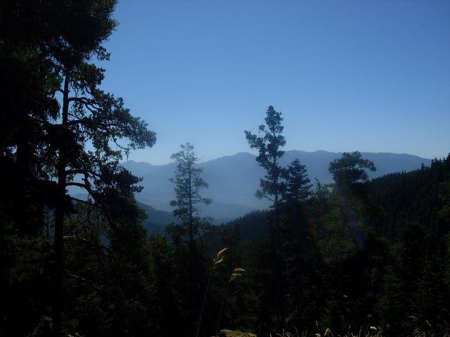 Zdjęcia: północny-zachód od Atskuri (Atskuri w połowie drogi pomiędzy Borżomi a Akhaltsikhe), Park Narodowy Borżomi-Karaguli, ... ciągnie ... do lasu...., GRUZJA