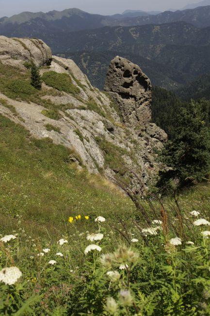 Zdjęcia: Borjomi-Karagauli, Kartlia Wewnętrzna, Borjomi Karagauli, GRUZJA