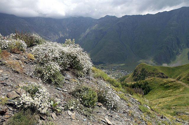 Zdjęcia: wzgórze Gergati, Wojenna Droga, widok na Kazbegi..., GRUZJA