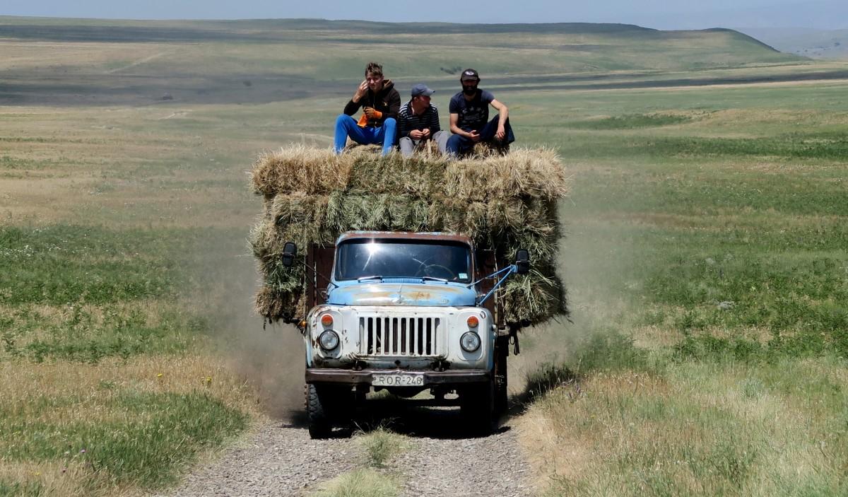 Zdjęcia: okolice udabno, gdzies w drodze, powrot z pola..., GRUZJA