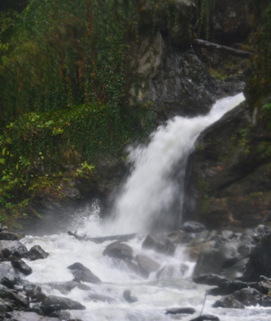 Zdjęcia: Rezerwat przyrody Lagodekhi, Lagodekhi, Wodospad Cietrzewia, GRUZJA