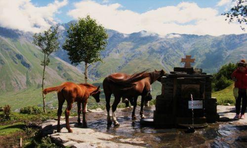 Zdjęcie GRUZJA / Chewi / przy kościele Gergeti  / Można konno