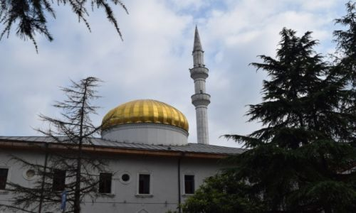 Zdjęcie GRUZJA / Adżaria / Batumi / Meczet Orta