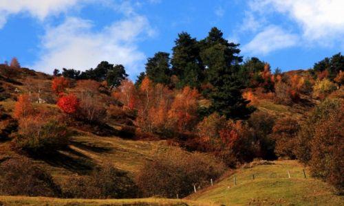 Zdjecie GRUZJA / Svanetia / Mestia / Barwy jesieni