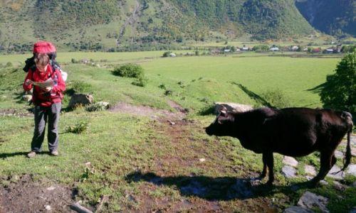 Zdjecie GRUZJA / Swanetia / W drodze do Adishi / Którędy na szlak?
