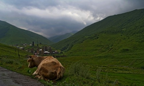 Zdjęcie GRUZJA / Swanetia / po drodze / w drodze do Ushguli
