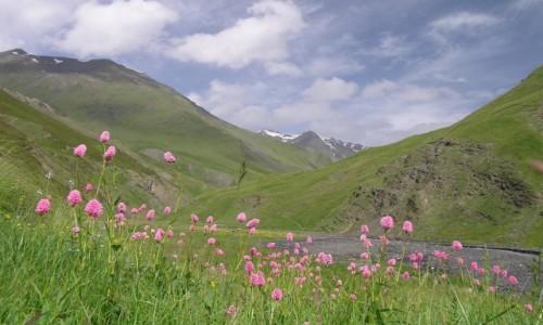 Zdjęcie GRUZJA / Tusheti / Tusheti National Park / Kaukaz