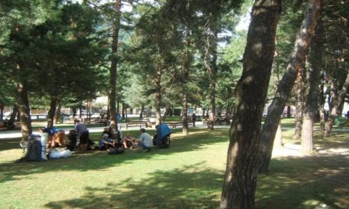 Zdjecie GRUZJA / Swanetia / Mestia / Mestia - park
