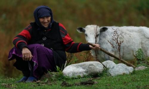 Zdjecie GRUZJA / Svanetia / Ushguli / Pasterka