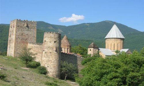 Zdjecie GRUZJA / Kaukaz / Gruzińska Droga Wojenna / Twierdza Ananur