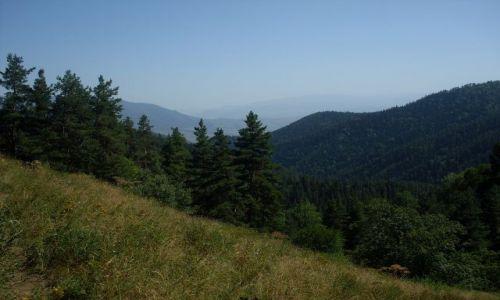 Zdjęcie GRUZJA / Park Narodowy Borżomi-Karaguli / północny-zachód od Atskuri (Atskuri w połowie drogi pomiędzy Borżomi a Akhaltsikhe) / ... wyjście z cienia....