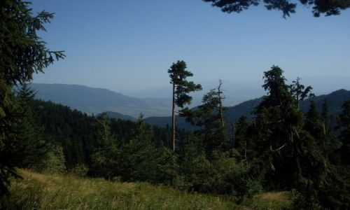 Zdjęcie GRUZJA / Park Narodowy Borżomi-Karaguli / północny-zachód od Atskuri (Atskuri w połowie drogi pomiędzy Borżomi a Akhaltsikhe) / ...wyjście z lasu...