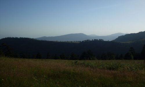 Zdjęcie GRUZJA / Park Narodowy Borżomi-Karaguli / północny-zachód od Atskuri (Atskuri w połowie drogi pomiędzy Borżomi a Akhaltsikhe) / ... na polance...