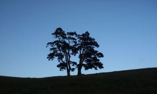 Zdjęcie GRUZJA / Park Narodowy Borżomi-Karaguli / północny-zachód od Atskuri (Atskuri w połowie drogi pomiędzy Borżomi a Akhaltsikhe) / ... jeszcze na niebieskim tle....