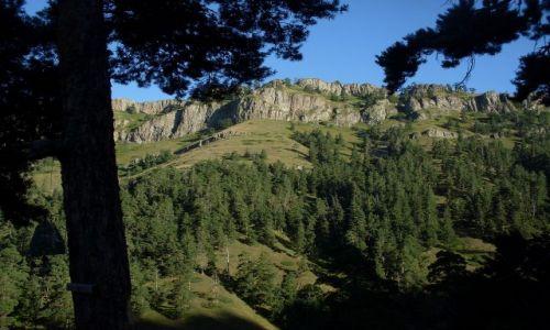 Zdjęcie GRUZJA / Park Narodowy Borżomi-Karaguli / północny-zachód od Atskuri (Atskuri w połowie drogi pomiędzy Borżomi a Akhaltsikhe) / ...ciepły poranek...
