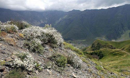 Zdjecie GRUZJA / Wojenna Droga / wzgórze Gergati / widok na Kazbeg