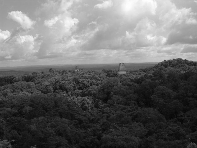 Zdjęcia: Tikal /Gwatemala/, Tikal - widok ogólny, GWATEMALA