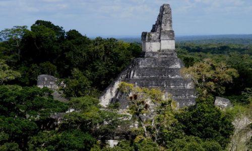 Zdjecie GWATEMALA / Peten / Tikal / Tikal