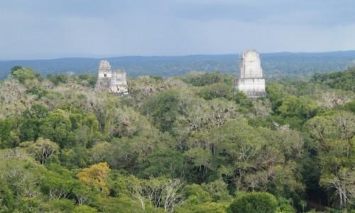 Zdjęcie GWATEMALA / Tikal / Tikal / Piramidy w dżungli