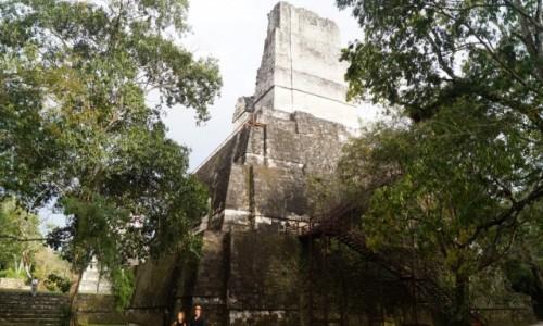 Zdjecie GWATEMALA / Tikal / Tikal / Piramida w dżungli